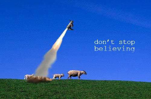 sheep_dontstop.jpg