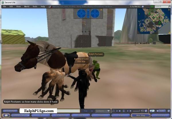 horsedeeks.jpg