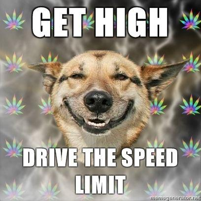Stoner-Dog-GET-HIGH-Drive-the-speed-limit.jpg
