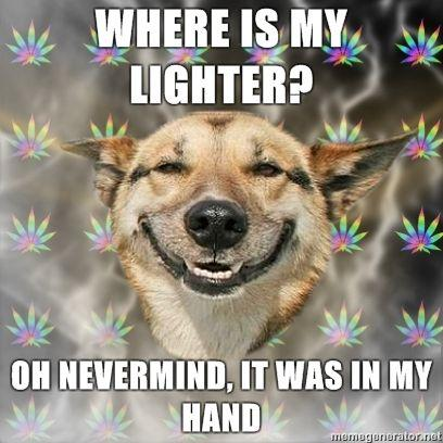 Stoner-Dog-WHERE-IS-MY-LIGHTER-OH-NEVERMIND-IT-WAS-IN-MY-HAND.jpg