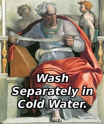 Wikipedia-Sistine-Joel__Michelangelo_Wash.jpg