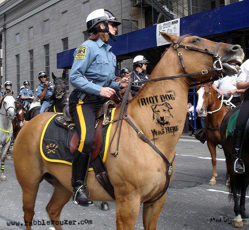 horsewhisperer.jpg