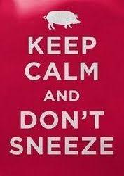Keep_calm_and_don_t_sneeze20110724-22047-s81b5g.jpg