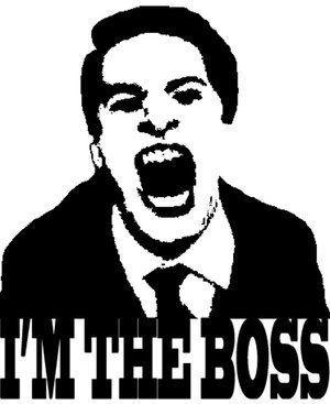 like_a_boss_by_andii_atomic.jpg