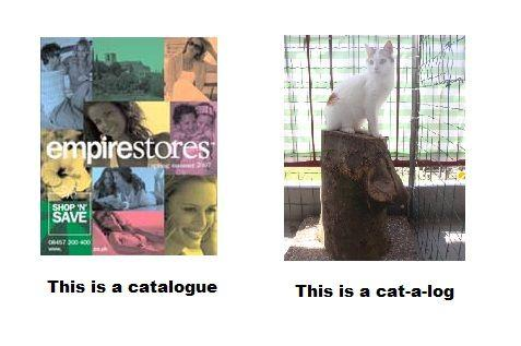 Catalogue_Cat-a-log.jpg