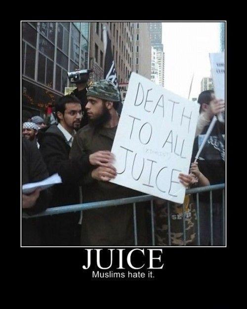 juice-500x625.jpg