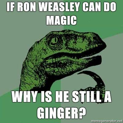 Philosoraptor-If-Ron-Weasley-can-do-magic-Why-is-he-still-a-ginger.jpg