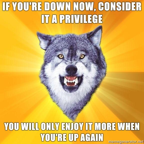 Courage-Wolf-if-youre-down-now-consider-it-a-privilege-you-will-only-enjoy-it-more-when-youre-up-again.jpg