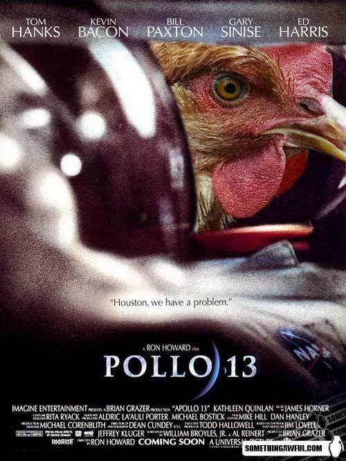 Pollo13.jpg