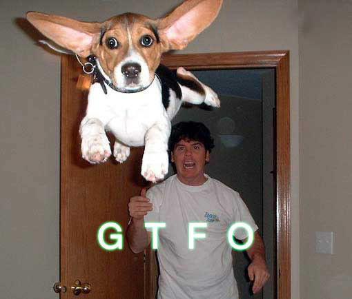 gtfo_copy3.jpg