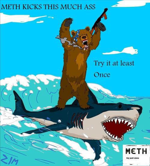 bear_shark_meth.jpg