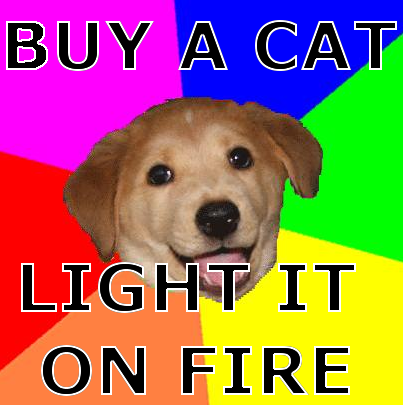 advice_dog.png