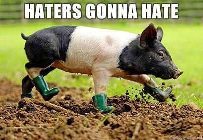Pigboots-Haters-gonna-hate.jpg