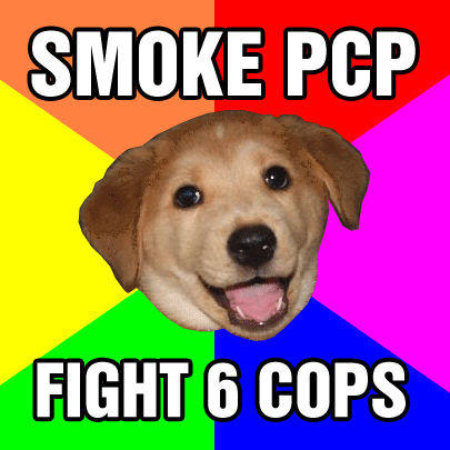 advicedogpcp.jpg