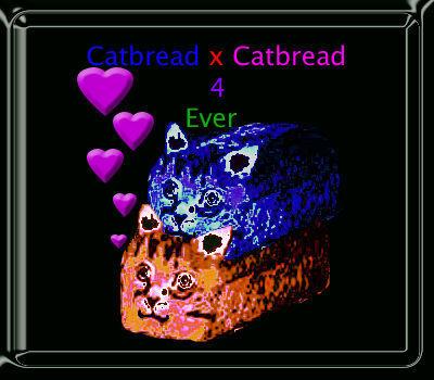 Catbread_lovin___by_double_trouble_lol.jpg