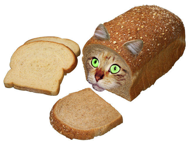 Cat_Bread.jpg