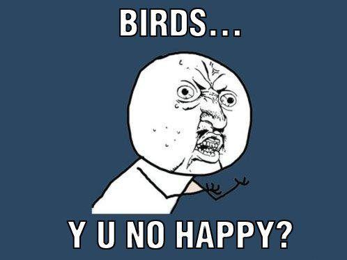 birdyuno.jpg