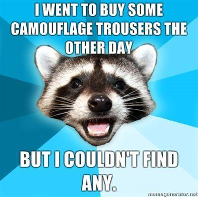 I-went-to-buy-some-camouflage-trousers-the-other-day-but-I-couldnt-find-any.jpg