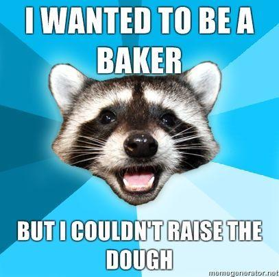 Lame-Pun-Coon-I-wanted-to-be-a-baker-but-I-couldnt-raise-the-dough.jpg