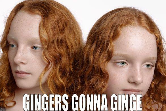 Gingers gonna ginge