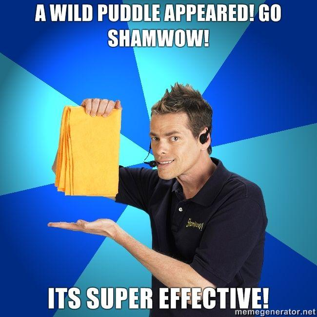 a-wild-puddle-appeared-GO-shamwow-its-super-effective.jpg