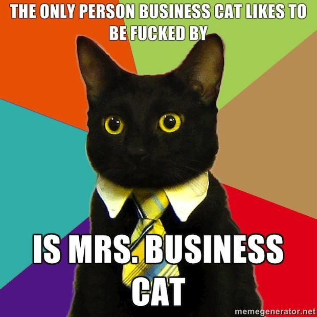 business-cat-16.jpg