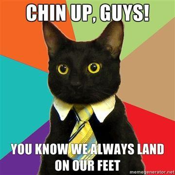 chin-up-guys-you-know-we-always-land-on-our-feet.jpg