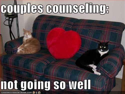 funny-pictures-your-cats-are-in-couples-counseling.jpg