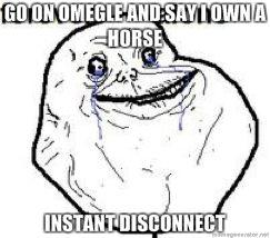 go-on-omegle-and-say-i-own-a-horse-instant-disconnect.jpg