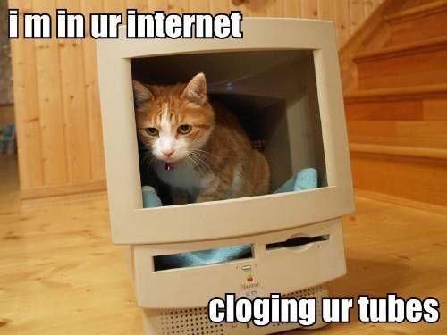 i_m_in_ur_internet_cloging_ur_tubes.jpg