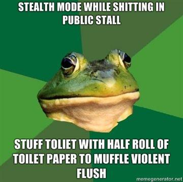 stealth-mode-while-shitting-in-public-stall-stuff-toliet-with-half-roll-of-toilet-paper-to-muffle-vi.jpg