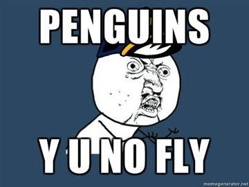 penguins-Y-U-NO-FLY.jpg
