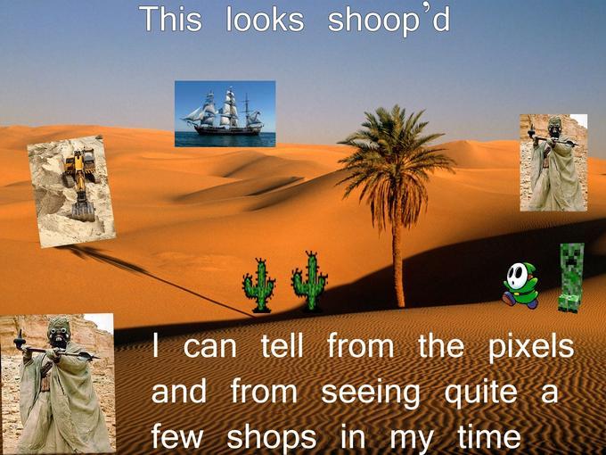 Lone_Palm_Sahara_Desert.jpg
