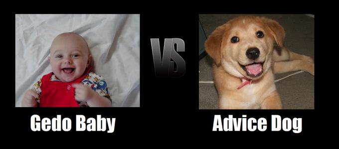 GedoBaby_VS_AdviceDog.png