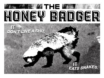honey-badger.png