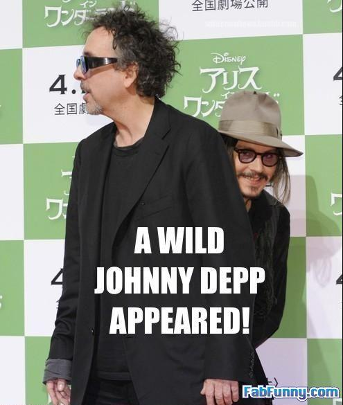 funny-celebrity-pictures-wild-johnny-depp-appears.jpg
