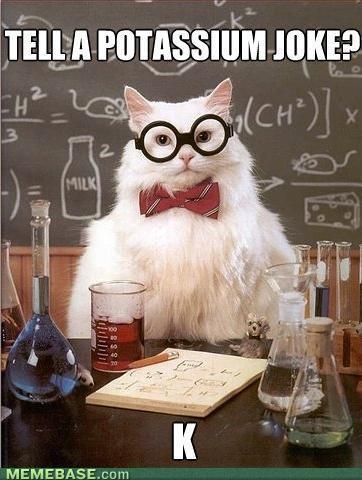 memes-introducing-chemistry-cat.jpg