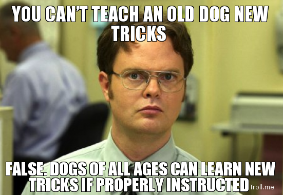 you-cant-teach-an-old-dog-new-tricks-false-dogs-of-all-ages-can-learn-new-tricks-if-properly-instructed.jpg