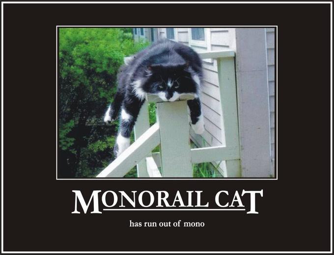 MonorailCat.jpg
