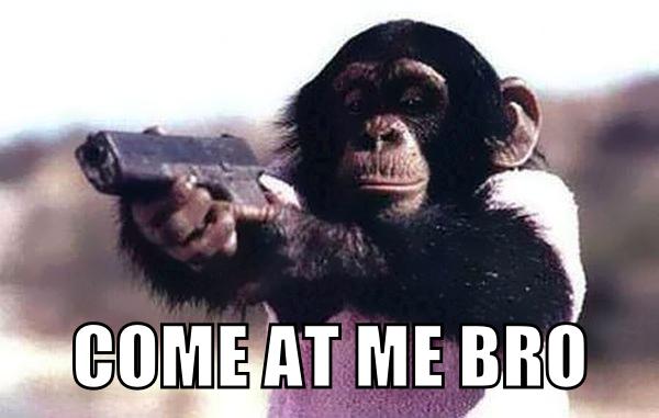 monkey-with-a-gun.png