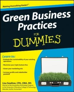 green-business-practices-for-dummies-cover.jpg