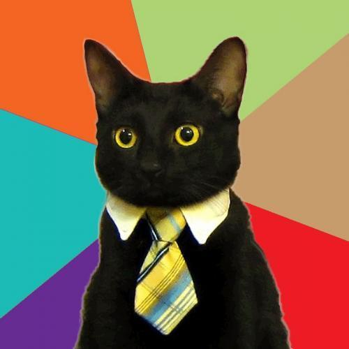 business-cat.jpg