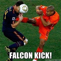falcon-kick-4792_preview.jpg