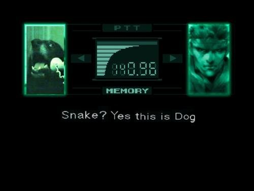 Snake+this+is+Dog+I+found+this+while+playing+on_d0065d_2859273.jpg