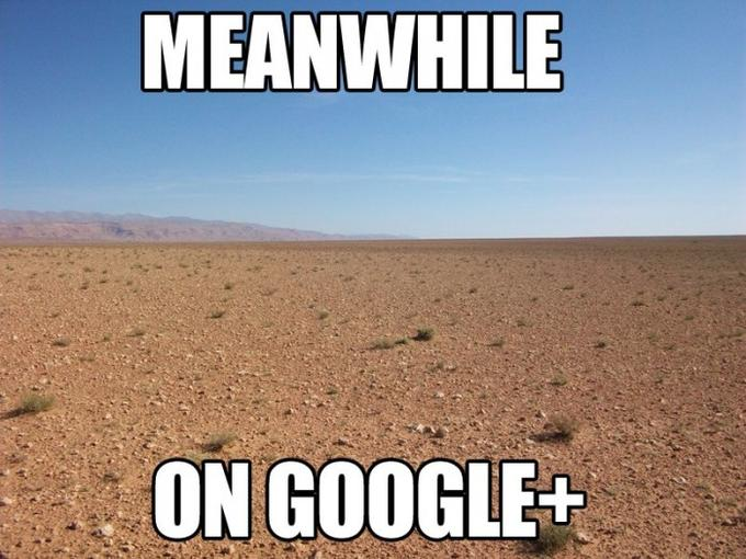 Meanwhile on Google+ [via r/reddit]