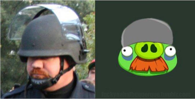 angry-spraycop.jpeg