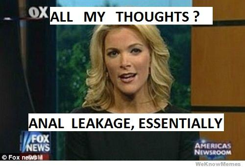 megyn-kelly-leakage.jpg