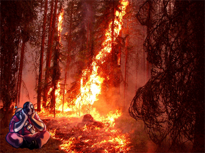 forestpyro.png