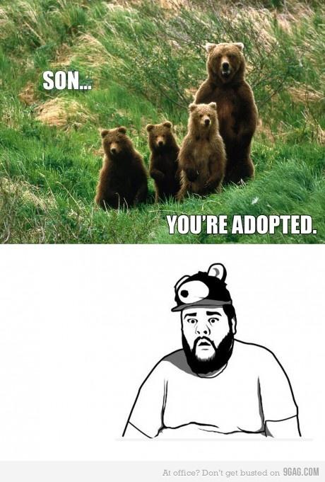 Sad bear guy meme - photo#12