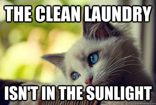 Funny Memes Clean Cats : First world problems cat know your meme